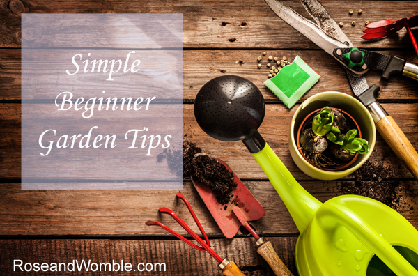 Simple Beginner Garden Tips