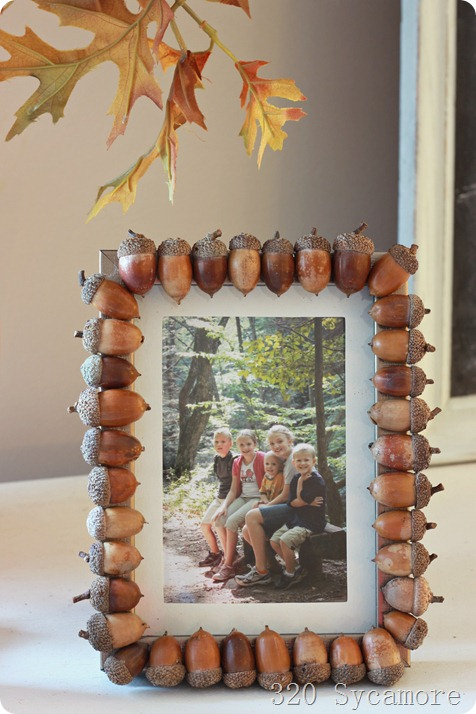 Cute way to decorate a cheap frame - you could even use the painted acorns from the previous project