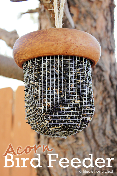 A great project to celebrate the Fall and help feed birds migrating down south