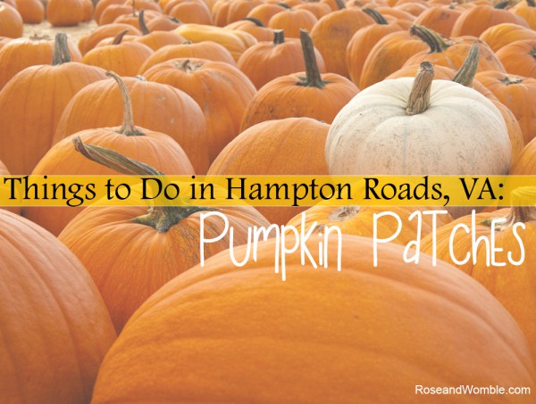 What to Do in Hampton Roads: Pumpkin Patches