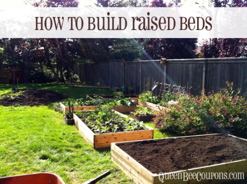 Rasied Bed Tutorial for Gardens Rose & Womble Realty Company