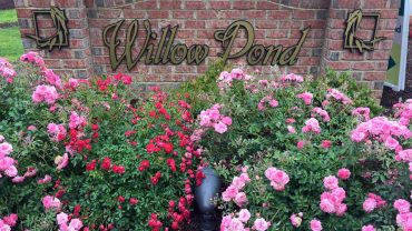 #AskJenLive visits Willow Pond in Virginia Beach
