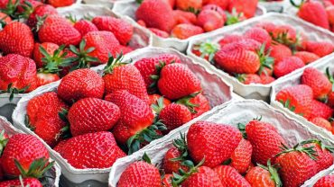 Celebrate the Strawberry in Hampton Roads