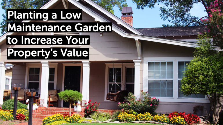 Planting a Low Maintenance Garden to Increase Your Property's Value